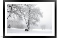 Snowing in a park, Framed Mounted Print