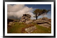 The Tree and the Tor, Framed Mounted Print