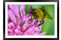 All in a Day's Work, Framed Mounted Print