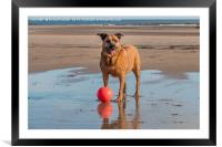 Come and Play PLEASE!, Framed Mounted Print