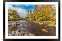 Autumn on the River Tees at Forest in Teesdale, Framed Mounted Print