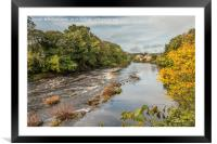 Autumn on the River Tees at Barnard Castle, Framed Mounted Print