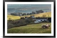 Birch Bush and Ettersgill House Farms, Teesdale, Framed Mounted Print