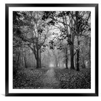 Figure In The Mist, Framed Mounted Print