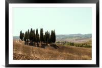 Typical landscapes for Siena Province in Tuscany, , Framed Mounted Print