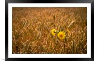 Yellow, Framed Mounted Print
