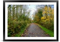 Autumn Road, Framed Mounted Print