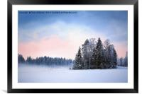 Winter Nightfall , Framed Mounted Print