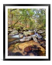 River Plym in Dewerstone Woods, Framed Mounted Print