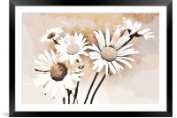 Blooming bouquet of daisies, Framed Mounted Print