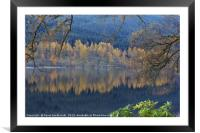 Autumn in Highlands, Framed Mounted Print
