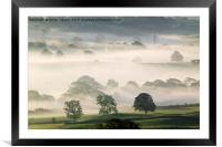 Misty morn., Framed Mounted Print
