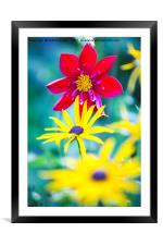 Red Yellow., Framed Mounted Print