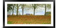 Solitary bench in an autumnal park , Framed Mounted Print
