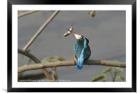 It's fishing time......, Framed Mounted Print