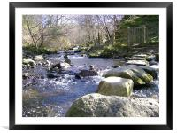 stepping stones , Framed Mounted Print