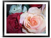 Fabric Roses, Framed Mounted Print