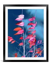 Leafy Branches, Framed Mounted Print