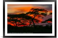 Red African Sunset, Framed Mounted Print