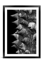 Armour, Framed Mounted Print