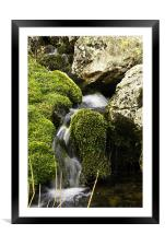 Babbling Brook, Framed Mounted Print