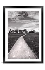 Stroll Down The Path, Framed Mounted Print