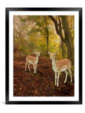 Two Little Deer's, Framed Mounted Print