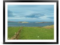 Graze with a view, Framed Mounted Print
