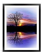 The Tree Of Reflections, Framed Mounted Print