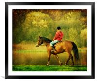 A Gentle Canter, Framed Mounted Print