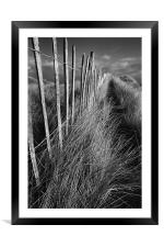 Picket path, Framed Mounted Print