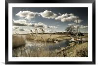 Reed beds at Hickling Broad, Framed Mounted Print