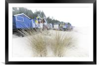 Beach huts and Pampas Grass, Framed Mounted Print