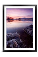 Frozen Pastels , Framed Mounted Print