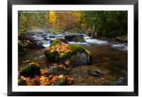 Autumn Stream, Framed Mounted Print