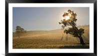 Country Sunrise, Framed Mounted Print