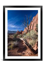 Sunset Trail , Framed Mounted Print