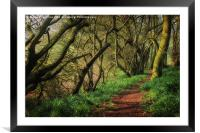 Bunkers Hill Edgefield 3, Framed Mounted Print
