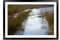 Silver reflections, Framed Mounted Print
