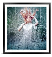 Willow, Framed Mounted Print