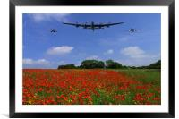Poppy field flypast, Framed Mounted Print