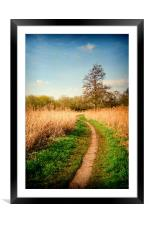 The Reed Beds, Framed Mounted Print