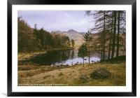 Frozen Blea Tarn and Langdale Pikes. Lake District, Framed Mounted Print