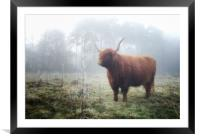Highland in the mist, Framed Mounted Print