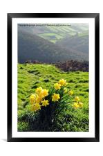 Springtime at County Gate , Framed Mounted Print