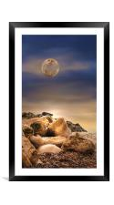 Rocky Solitude, Framed Mounted Print