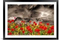 Tulips Galore, Framed Mounted Print