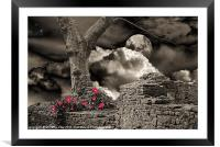 A Walk in the Park, Framed Mounted Print