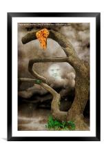 In the Dead of Night, Framed Mounted Print