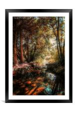On Golden Pond, Framed Mounted Print